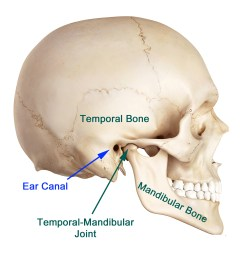 even with the advancement in research it is still difficult to pinpoint the exact cause of tmj most of the problems arise from problems with the muscles  [ 1600 x 1600 Pixel ]
