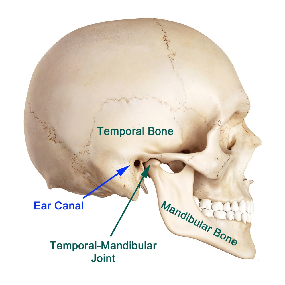 medium resolution of even with the advancement in research it is still difficult to pinpoint the exact cause of tmj most of the problems arise from problems with the muscles
