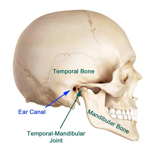 small resolution of even with the advancement in research it is still difficult to pinpoint the exact cause of tmj most of the problems arise from problems with the muscles