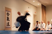 Aikido International Foundation Japanese Culture Center