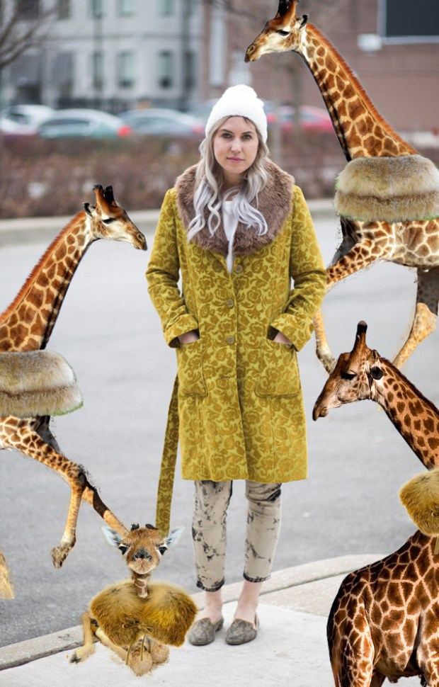 The Best Coat for Chicago Winter