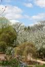 Lilacia Park 6 - http://chicagolandgarden.com/