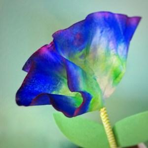 STEM needs Flowers