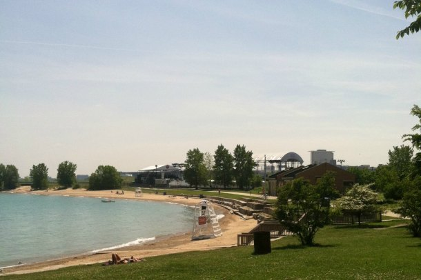 Volunteer for Beach Clean up with Shedd Aquarium