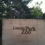 Guide to Lincoln Park Zoo Chicago