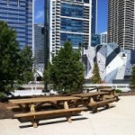Maggie Daley Park open