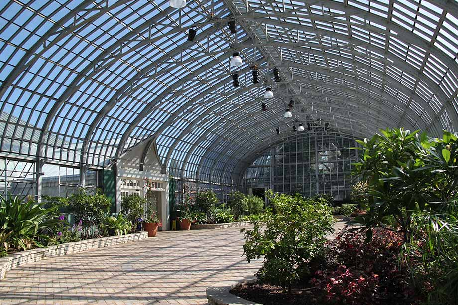 Visit Garfield Park Conservatory Chicago On The Cheap