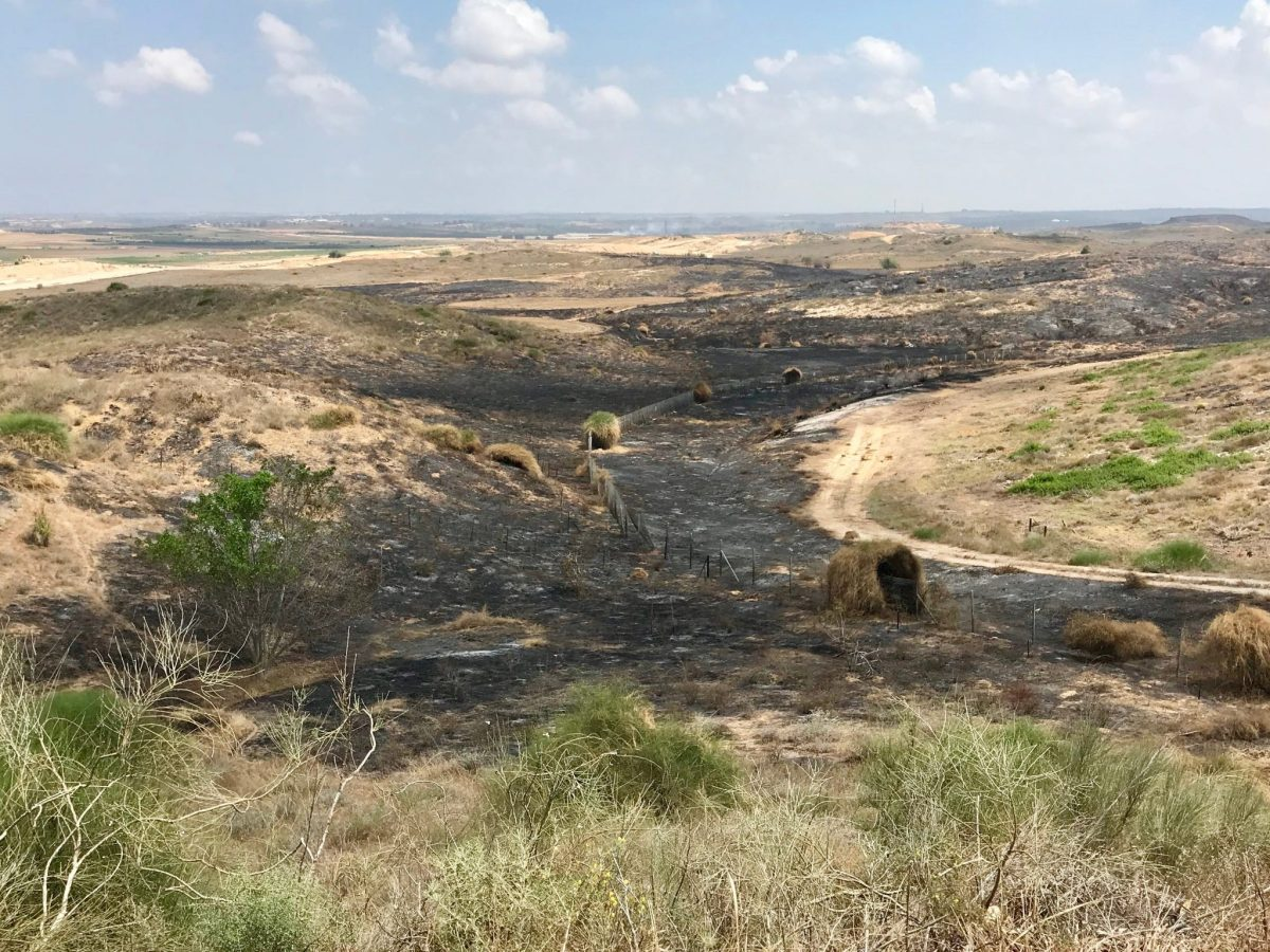 Fields inside Israel, just a few hundred meters from the Gaza fence, burnt by fires started by Molotov cocktails affixed to kites flying from Gaza in 2018