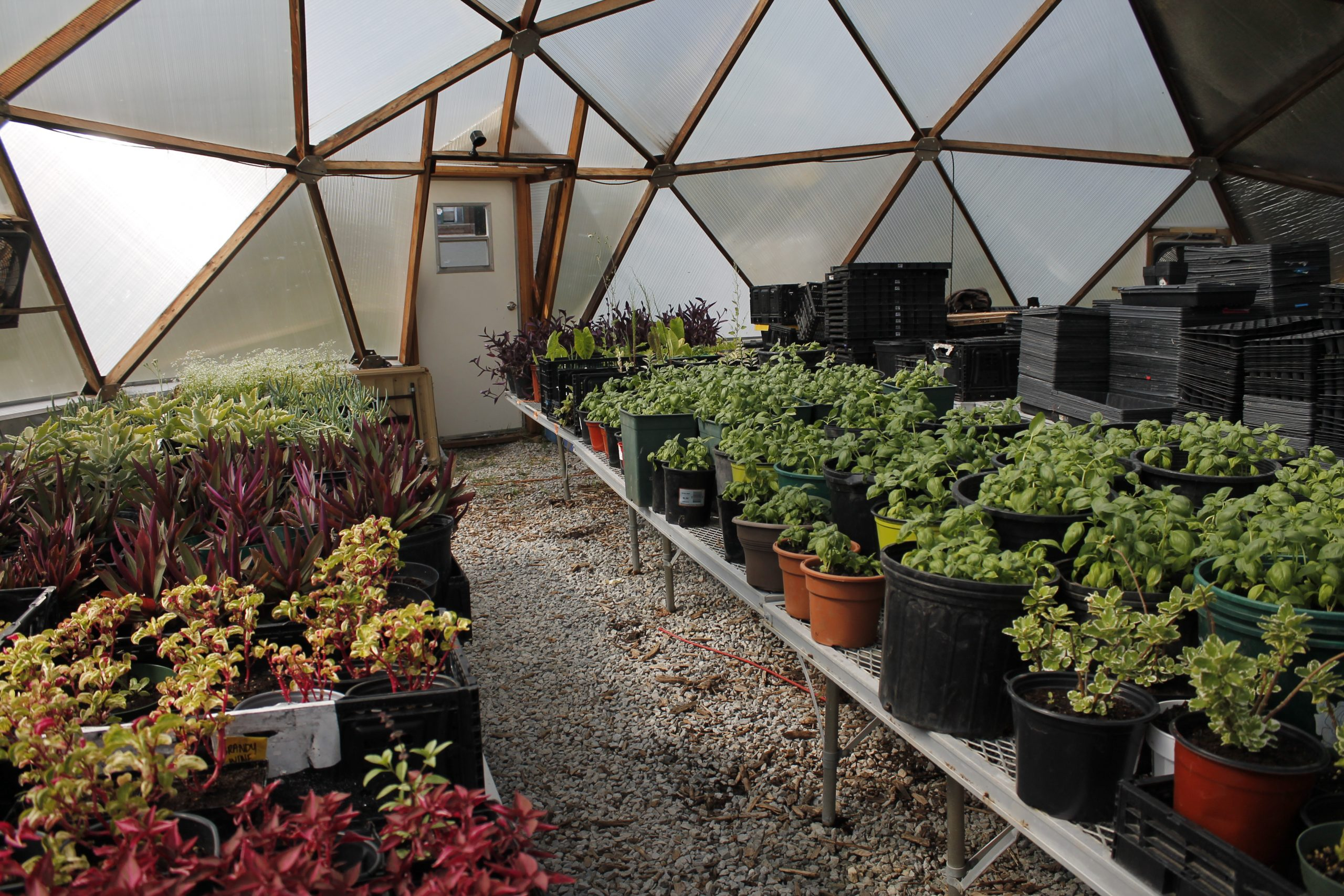 A geodesic dome built in 2017 at the South Chicago UGC farm has been helping the collective and its partners grow produce year-round.