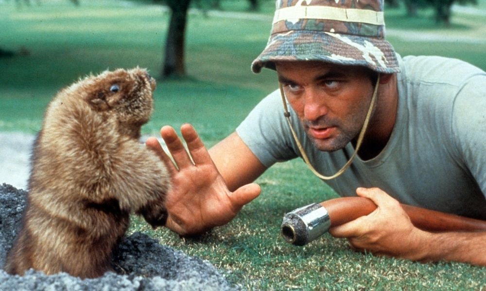 Bill Murray says hello to his furry friend in <i>Caddyshack</i> on Tue 6/13 at Music Box.