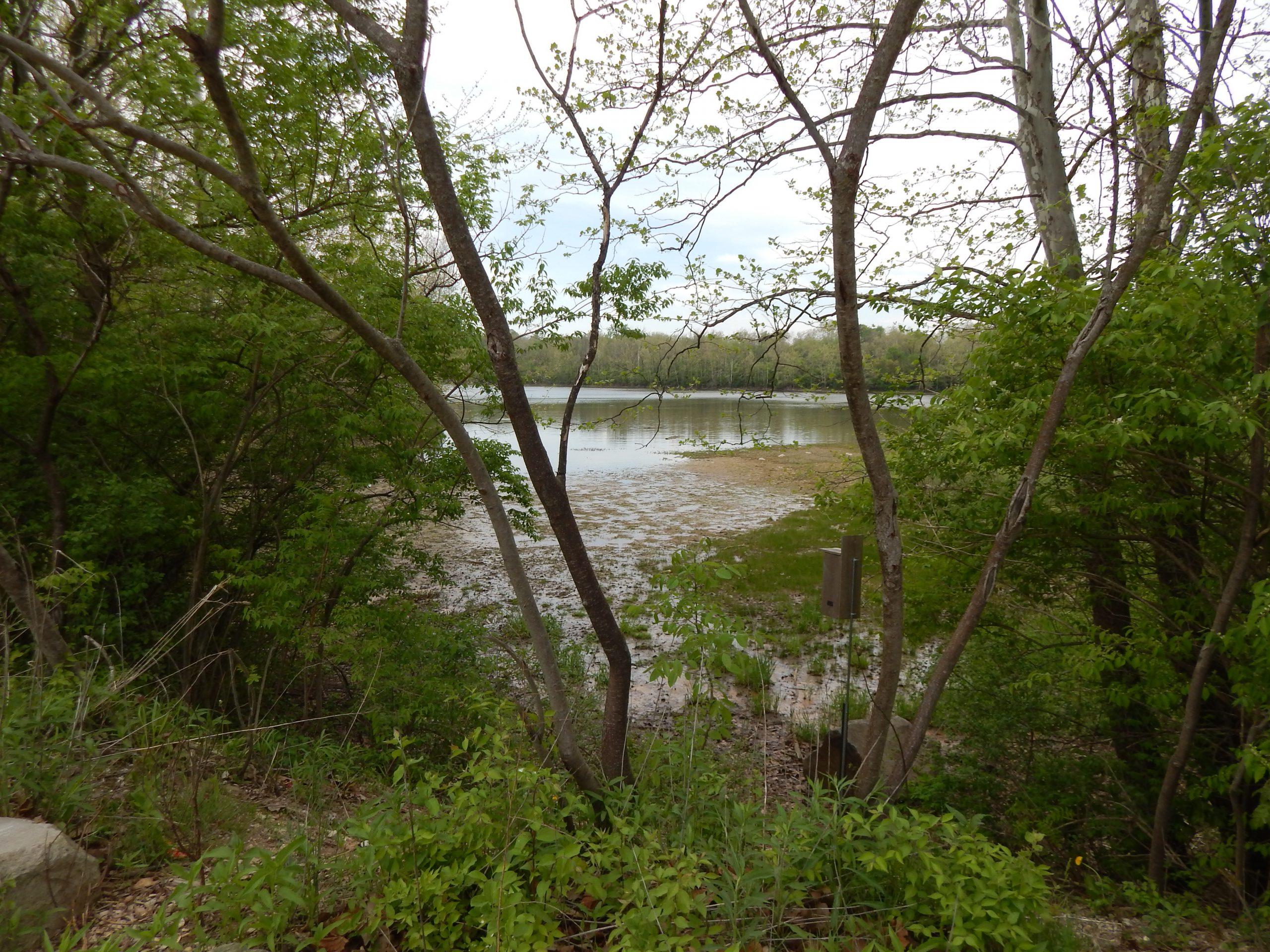 Virginia B. Fairbanks Art and Nature Park: 100 Acres