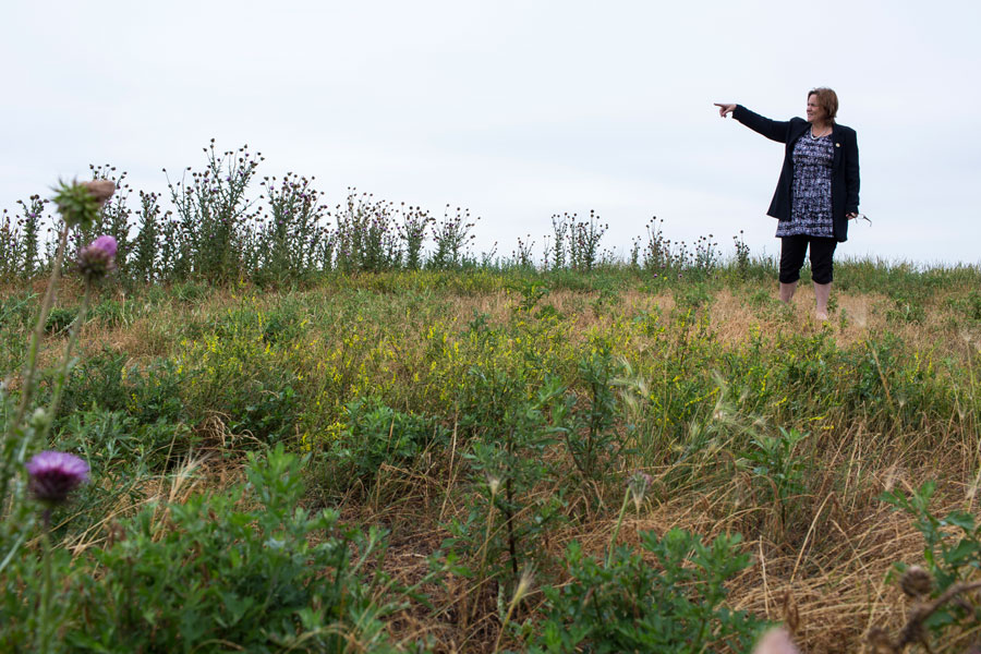 Garza stands on a hilltop at Big Marsh, a former industrial waste dumping site slated to open as a bike park in the fall of 2016.