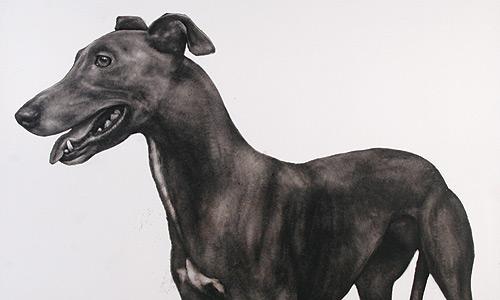 Juan Perdiguero's Perro Negro Marfil at ThreeWalls