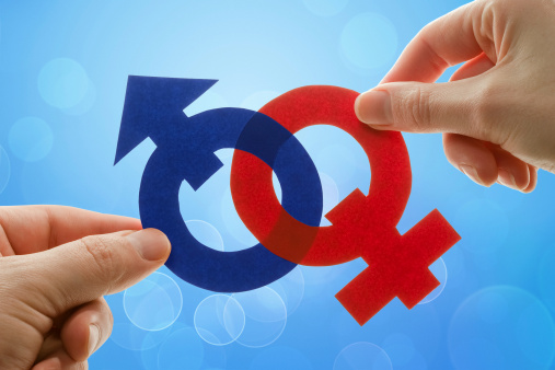 """Some folks are gender neutral, some are bigender, some are agender. Then there's pangender, genderless, genderfluid, genderqueer, gender nonconforming, gender questioning, and gender variant, as well as genderfuck, trigender, and intergender."""