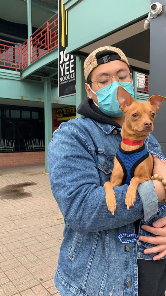 Applications to foster and adopt dogs like Rusty, who provide a state-approved reason to be outside, have been particularly high.