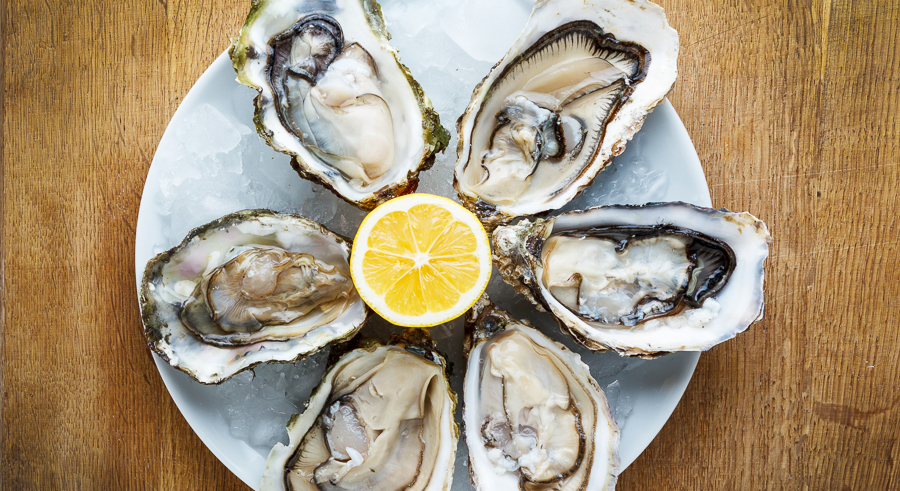 It's oysters galore in Roscoe Village on Sat 9/10.