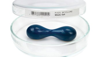 <i>Mitotic Cell </i>by Paul McClure