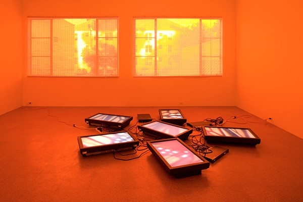 """Diana Thater, <i>Untitled Videowall (Butterflies)</i>, 2008, from """"The Sympathetic Imagination"""" at the MCA"""