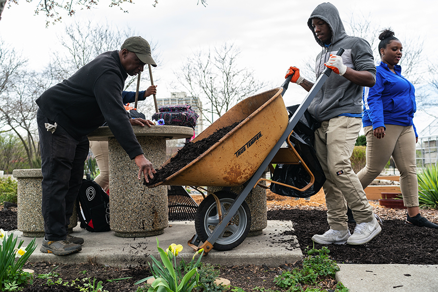 At the botanic garden he helped create, William Hill gets assistance from Hyde Park Academy student Darius Triplett moving mulch as part of a day of volunteer work for seniors at the high school on April 22, 2019.