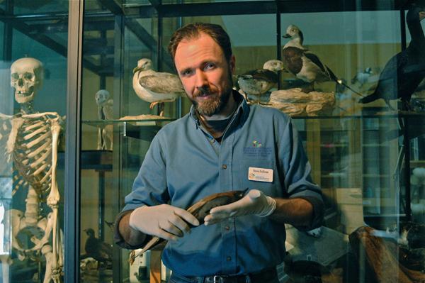 Sullivan with the museum's passenger pigeon