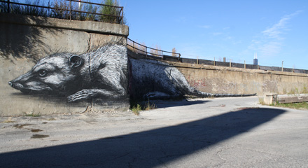 Alderman Danny Solis has used his own money to support this mural of a giant possum.