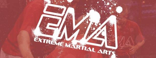 Extreme Martial Arts Schererville