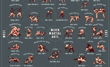 Striking and Grappling Styles Inforgraphic