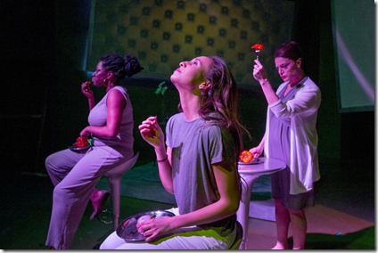 Echaka Agba, Daniella Pereira and Jennifer Engstrom star in Women Laughing Alone With Salad, Theater Wit
