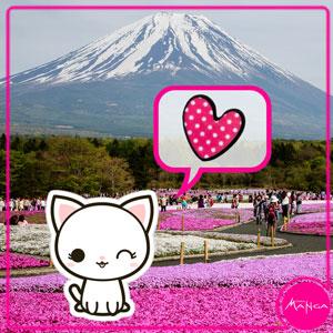 Chica-Manga-Sakura-polka-dot-heart-butterfly-clasp-pin