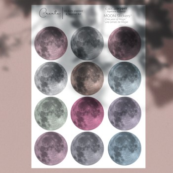 Moon stickers annuel