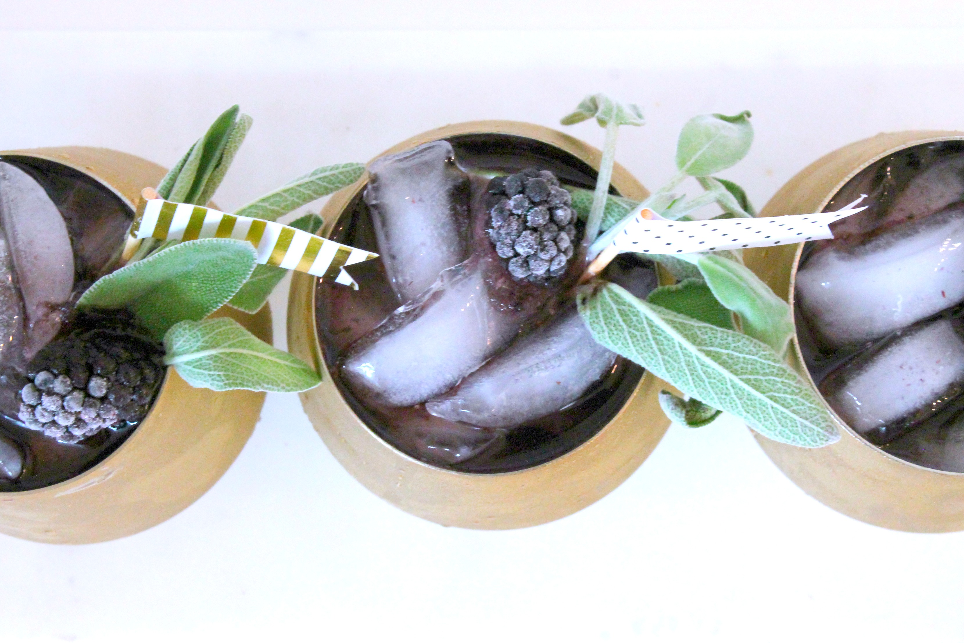 Blackberry Sage Low Carb Sparkling Cocktail