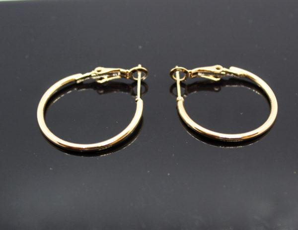 Hoops Earring