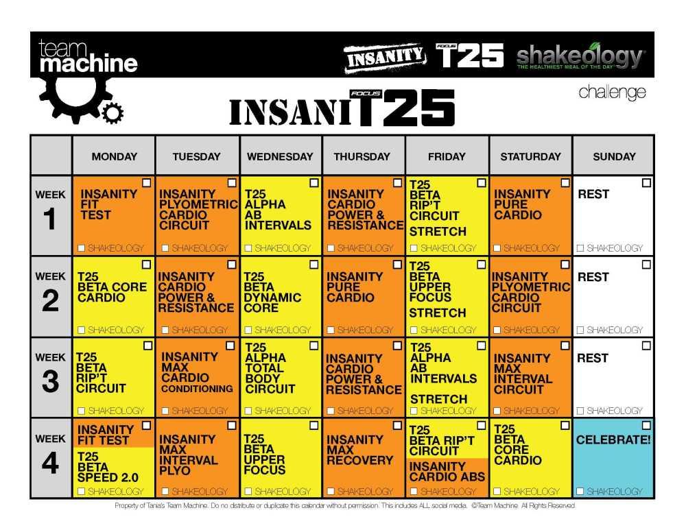Insanity & T25 Hybrid (InsaniT25 Workout Review & Calendar!!) (4/4)