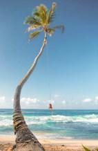 Sri Lanka Palm Tree Rope Swing Dalawella