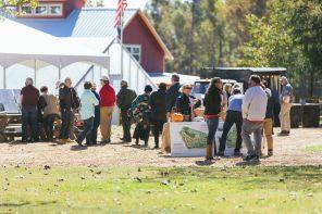 Fall Fest on The Farm 10/21