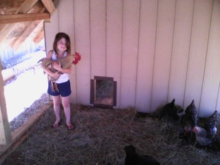 Girl holding rooster