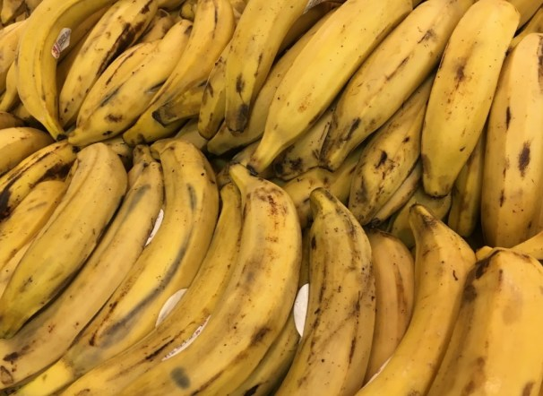 bananas on dos and don'ts of feeding chickens