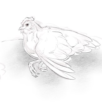 Sketch of Hen with Vitamin Deficiency Courtesy of Hannah Smith