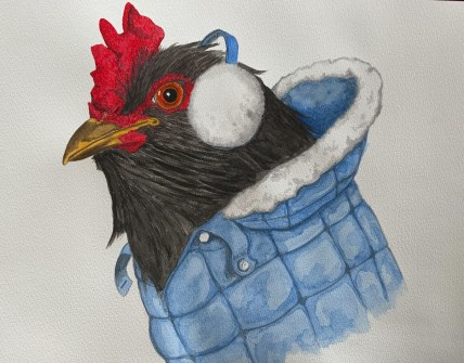 Cold Rooster in Watercolor Courtesy of Paul Smith