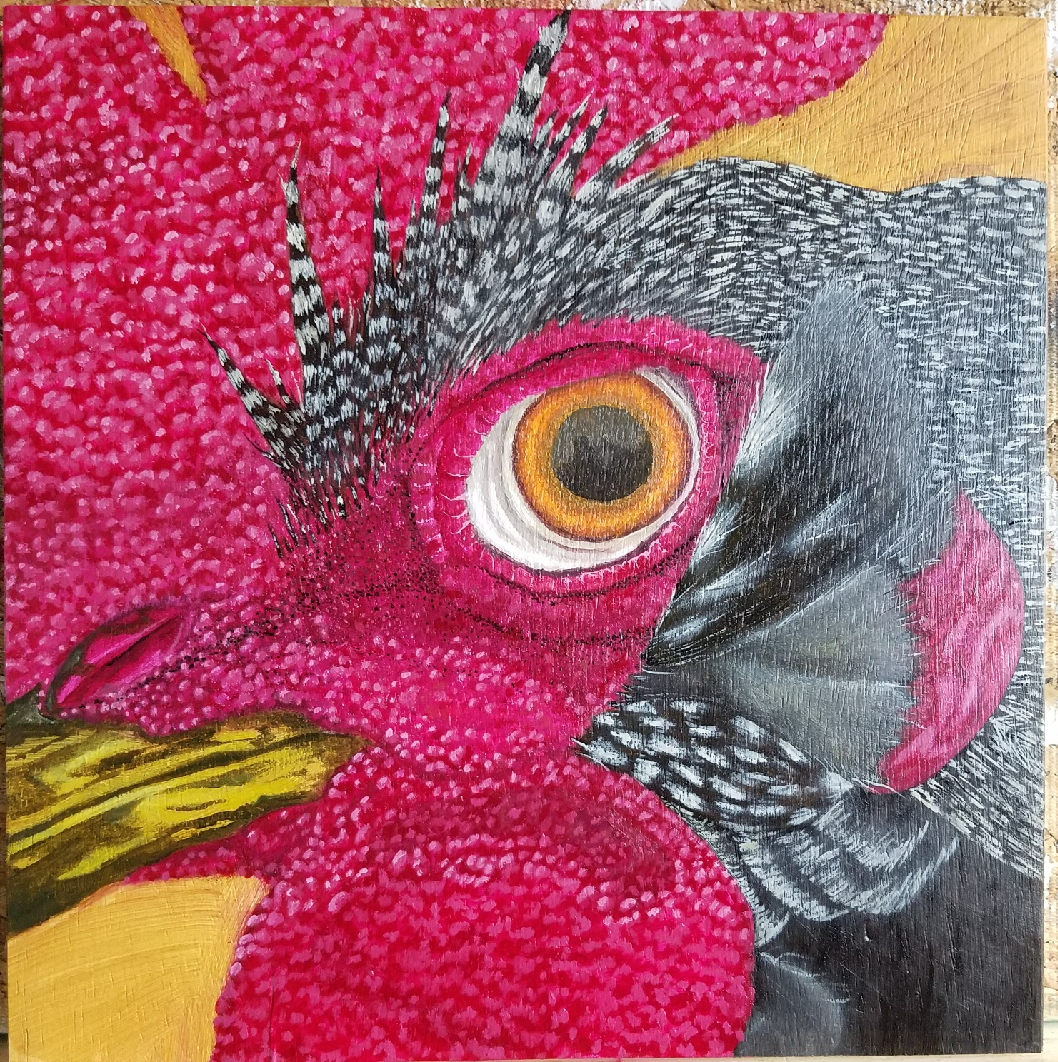 Oil Painting of Rooster Eye Courtesy of Paul Smith