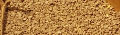 Crumble feed for chicks for dos and don'ts of feeding chickens