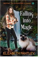 "Alt=""falling into magic by elizabeth pantley"""