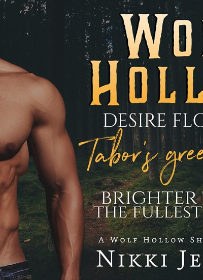 """RELEASE DAY: """"Wolf Hollow"""""""