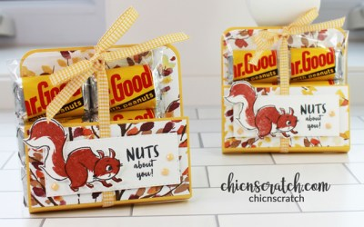 Nuts About Squirrels Candy Holder