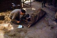 Um capelão do Exército americano se ajoelha ao lado de um soldado ferido, a fim de administrar a benção eucarística, França, 1944.