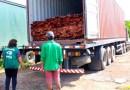 Pará lidera número de apreensões de madeira ilegal em rodovias do país