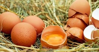 7 alimentos para um café da manhã saudável na dieta