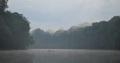 ICMBio publica edital do programa Adote um Parque