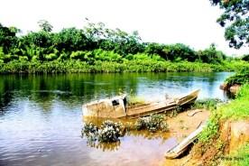 Exposição Amazônia - Chico Terra (121)