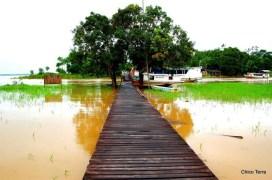 © 2008 -http://chicoterra.com - comunidade de Itamatatuba